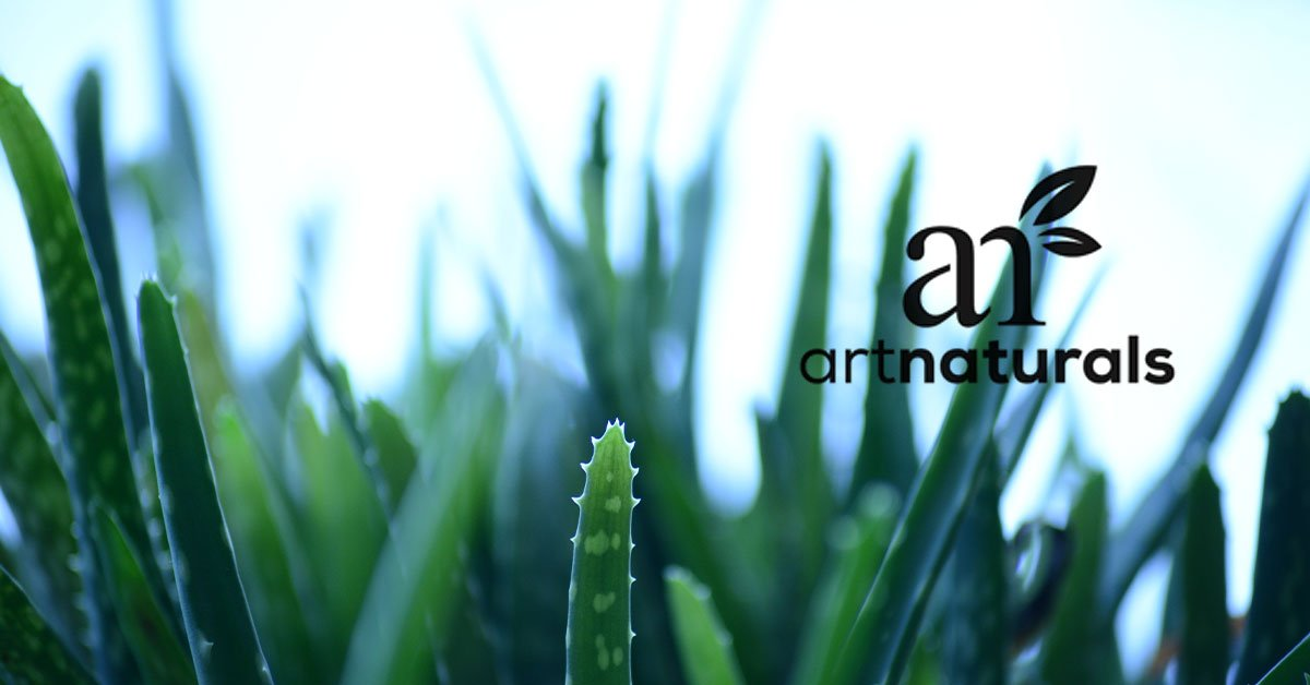 artnaturals-featured